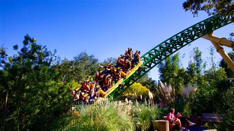 Busch Gardens Vacation Packages by Busch Gardens In Ta Florida Expedia Ca