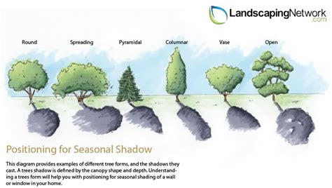 How To Landscape Your Front Yard Energy Efficient Landscaping Landscaping Network