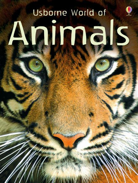 animal books world of animals at usborne children s books