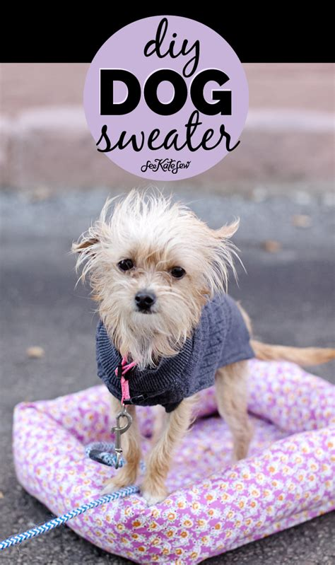 dog sweater sewing pattern  cute puppy pictures