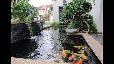 desain model kolam ikan hias minimalis   ibeqxkozqc
