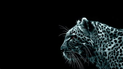Glowing Animals glowing cheetah animal wallpaper 437 wallpaper hd