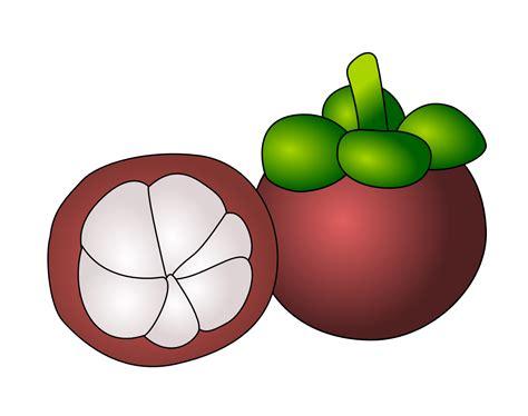 fruit clipart clipartist net 187 clip 187 manggis fruit clipartist net