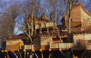 treetop castles the duke of northumberland s swanky forest mansion