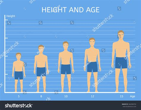 average height the gallery for gt average by country
