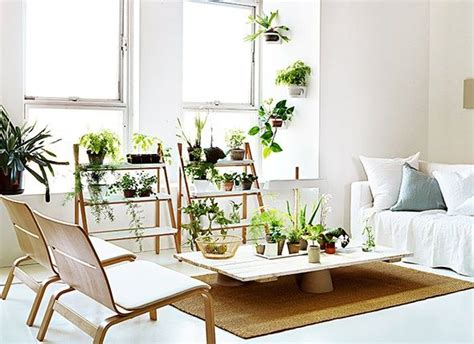 decorate home with plants decorating with house plants indoor garden pinterest