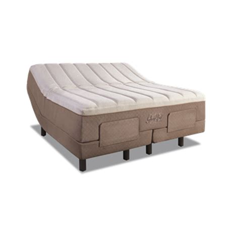 Why Are Tempur Mattresses So Expensive by Tempur Pedic Grandbed Reviews