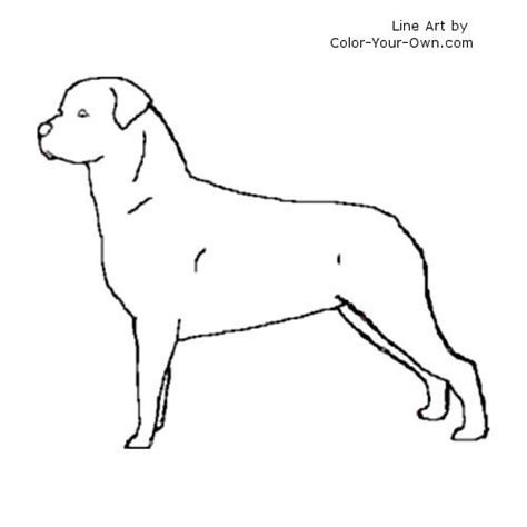 Rottweiler Puppy Coloring Pages Rottweiler Coloring Pages