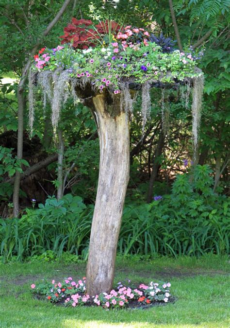 Tree Stump Decor by Decorate Your Garden With Tree Stumps In An Amazing Way