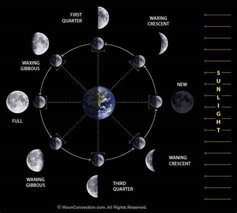 diagram of moon phases how to use the moon phases to your advantage astrology