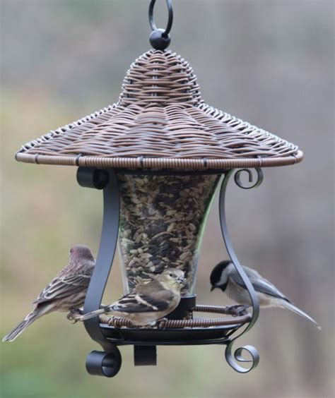 woodlink audubon series wicker lantern style bird feeder