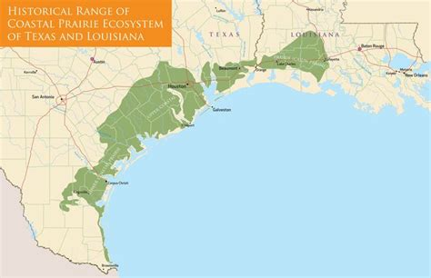 texas ecosystems map 30 best images about hspva prairie connections on cave in texas longhorns and