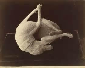 Erupting mount vesuvius in pompeii images amp pictures findpik