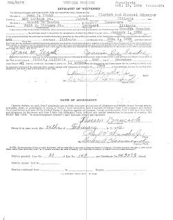 Grundy County Il Court Records Joliet Genealogy Illinois Naturalization Records