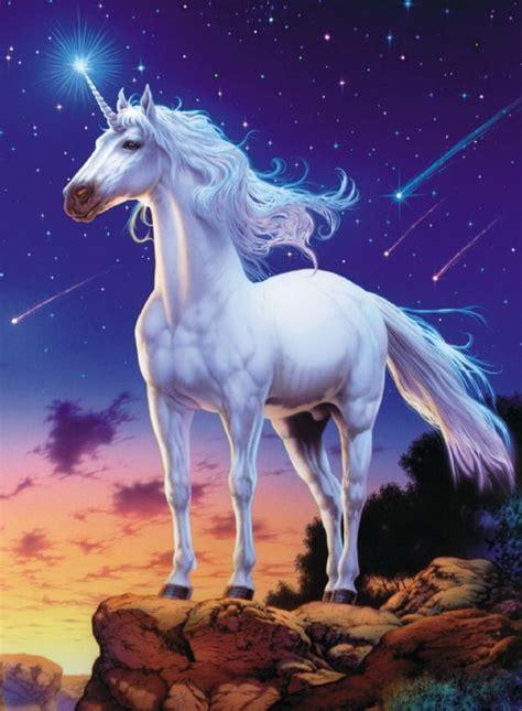 unicornios en imagenes el unicornio una criatura de amor puro punt magic