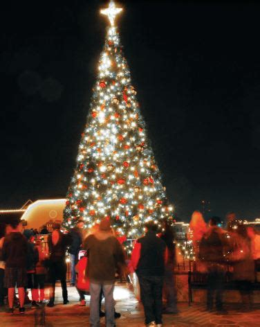 christmas tree permits in el dorado ca el dorado town center tree lighting