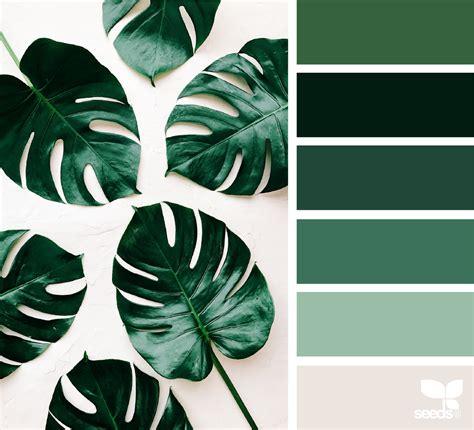 botanical colors botanical hues seeds color pallets and design seeds