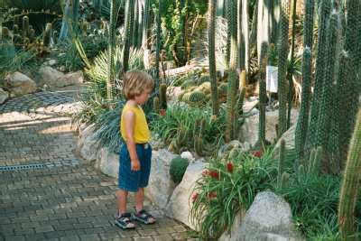 garten fräsen lassen garten palmengarten frankfurt innenr 228 ume und m 246 bel ideen