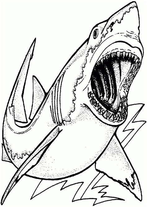 scary shark coloring page shark free coloring pages