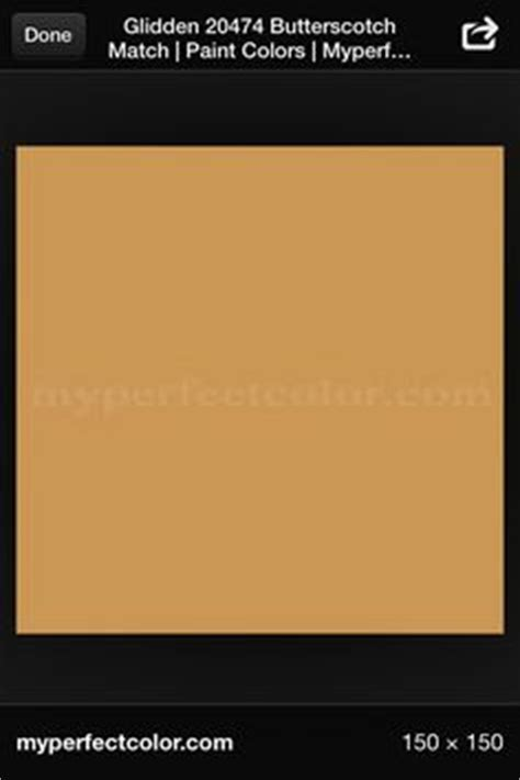 butterscotch color butterscotch paint butterscotch color ranger adirondack paint