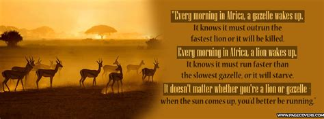 african spirituality quotes quotesgram