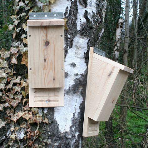 build your own bat box by wudwerx notonthehighstreet com