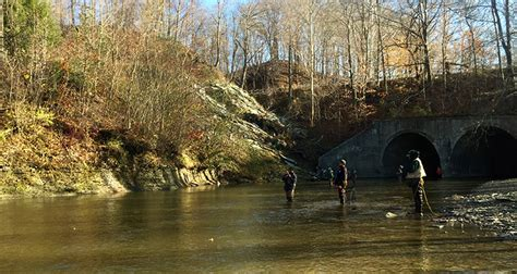 pa fish and boat report pennsylvania fishing report november 19 2015 on the water