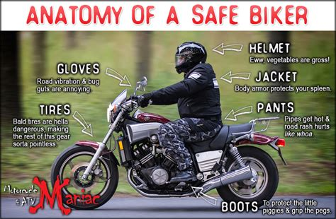safest motorcycle jacket anatomy of a safe biker motorcycle safety stay safe