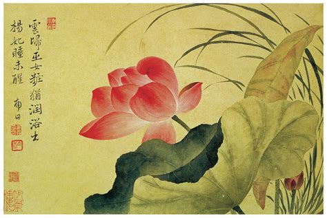 lotus painting and paintings on