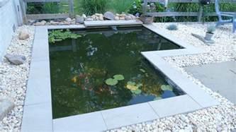 Backyard Koi Ponds Diy Modern Backyard Koi Pond On A Budget Youtube