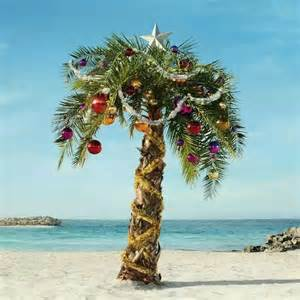 christmas in the caribbean beachy stuff pinterest