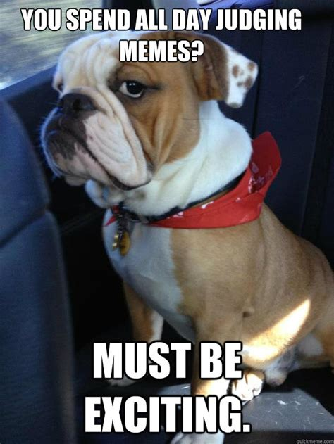 Bulldog Meme - bulldog puppy meme