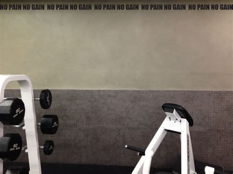 home gym wall decor work out home gym decor wall decal wall border no pain no
