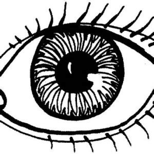 printable eyes to color eyes drawing lovely eyes coloring page drawing lovely