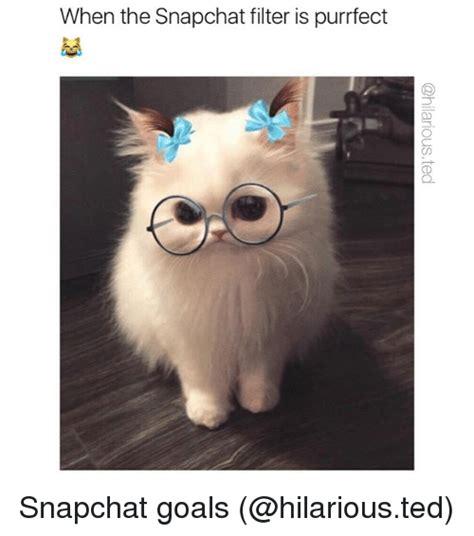 memes  snapchat filter snapchat filter memes