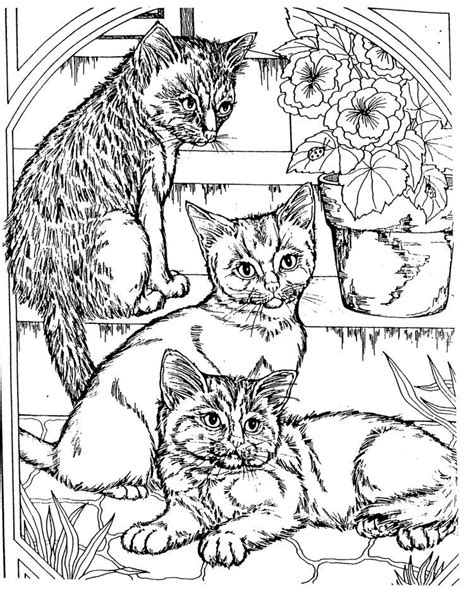 kitten coloring pages for adults awesome coloring pages for adults coloring home