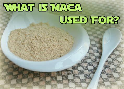 best maca root powder what is maca root wehelpcheapessaydownload web fc2