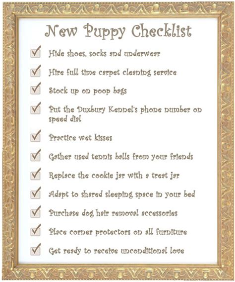 what age do puppies need programs services duxbury kennel in the pines 500 franklin duxbury ma