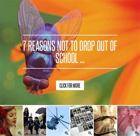 7 Reasons Teenagers Want To Drop Out Of School by 7 Reasons Not To Drop Out Of School Lifestyle