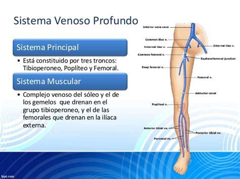 safena interna patologias venosas perifericas