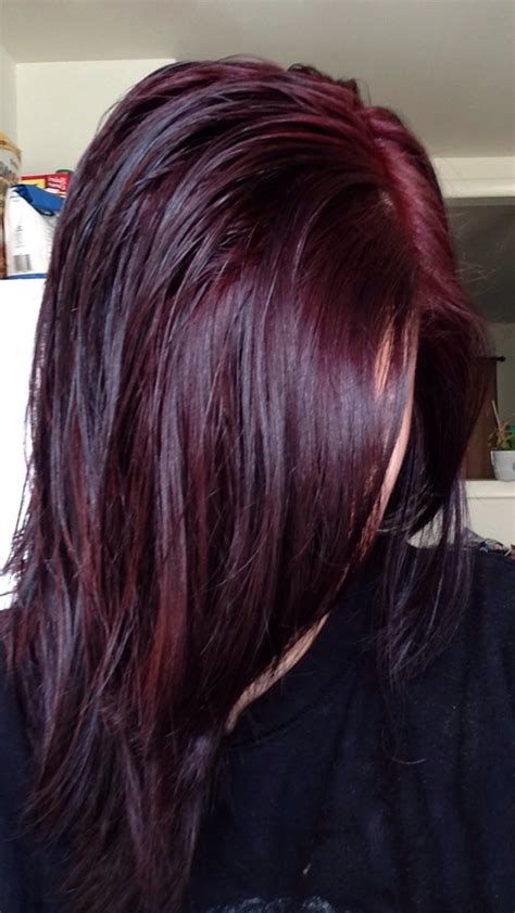chocolate cherry and deep burgundy bown color pont tials extensions chocolate cherry so pretty hair pinterest cherries