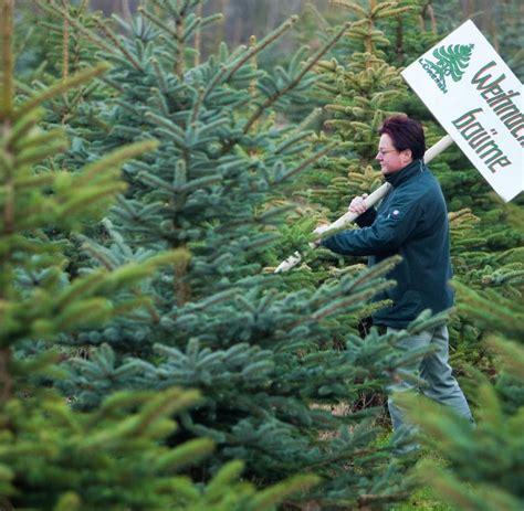 top 28 weihnachtsbaum selber schlagen ruhrgebiet