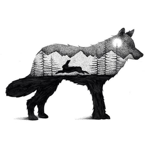 libro drawn to nature a wilderness scenes illustrated within striking animal silhouettes my modern met