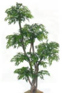 decorative trees for home 78 quot tall chinese ming tree asian artificial flowers