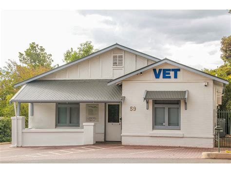 light street animal hospital prices colonel light veterinary clinic vets veterinary