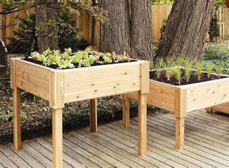 standing bed 17 best images about garden standing garden beds on