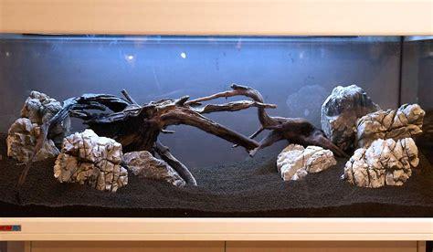 Aquarium Ohne Pflanzen Einrichten 6848 by Aquarium Einrichten Anleitung Aquariumeinrichten