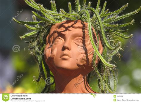 Medusa Planter medusa royalty free stock images image 1033579