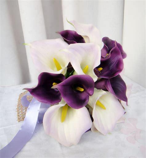 giglio viola fiore acquista all ingrosso calla giglio viola da