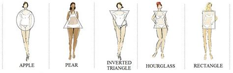 dresses for your body shape determining body shape by measurements